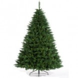 Pine Christmas Tree 10 Feet