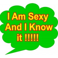 I am Sexy and I Know It Placard