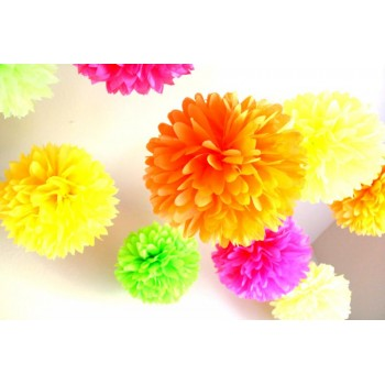 Assorted Color Pom Poms Set Of 6