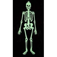 Glowing Skeleton For Halloween Party Decor (58 Inch)