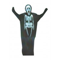 Halloween Adult Costume
